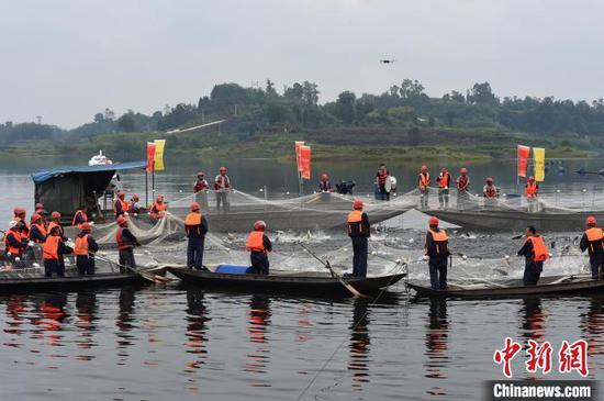 图为重庆玉滩水库开启今年第一网捕鱼活动。 周毅 摄