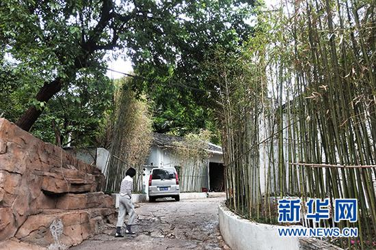 图为5月7日拍摄的重庆市江北区石马河灯盏窝片区一角,绿树成荫,翠竹如帘。新华网 李海岚 摄