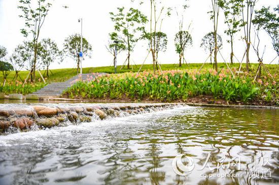 整治后的跳磴河河面波光粼粼,两岸绿树成荫。重庆市规划自然资源局供图