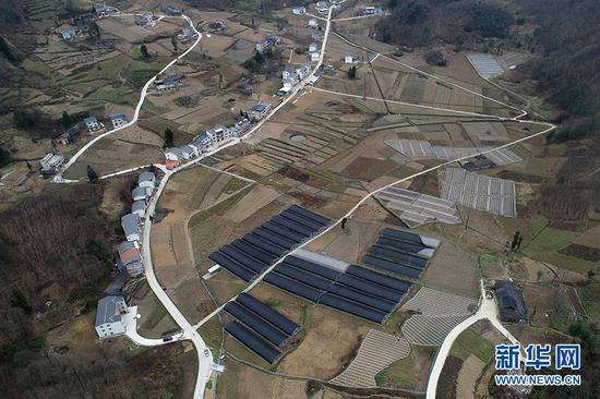 重庆市巫溪县西安村位于高山平地,村中有着大片药材田。新华网 李相博 摄