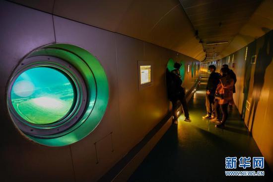 2月21日,游客在白鹤梁水下博物馆参观。