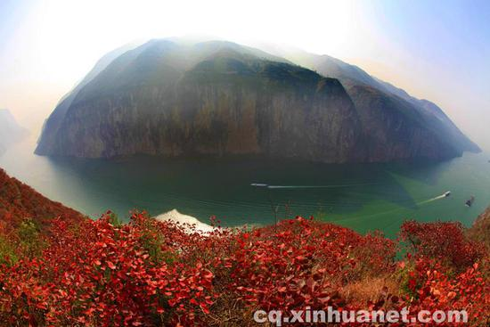长江三峡沿线的红叶。新华网发