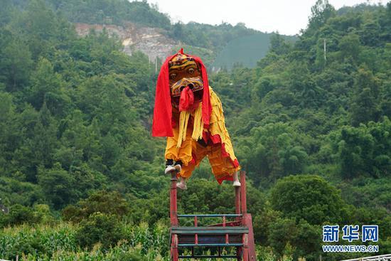 民俗表演《高台舞狮》。新华网 马天龙 摄