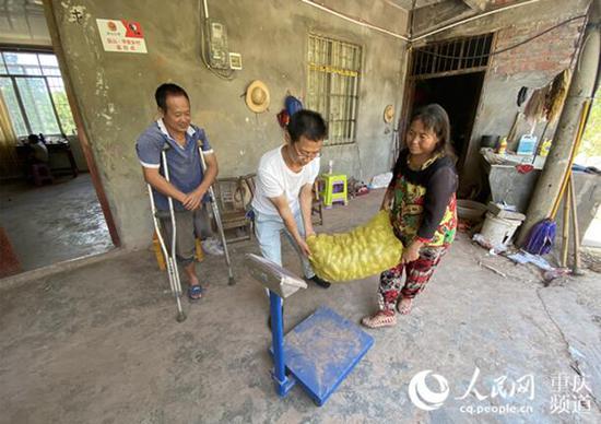 罗辉在村民家收购土豆。 刘政宁摄