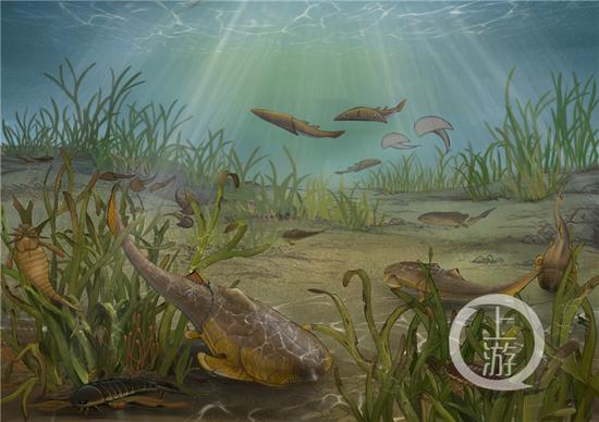 △边城鱼生态复原图