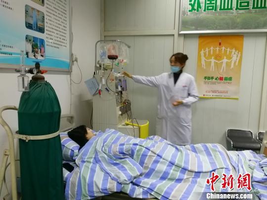 图为捐献者小杨(化名)正在采集造血干细胞。 钟欣 摄