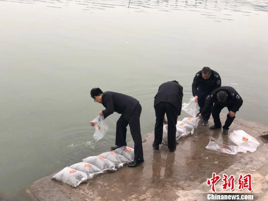 资料图为检察官在重庆全市检察机关渔业生态修复示范基地放养鱼苗。 刘相琳 摄
