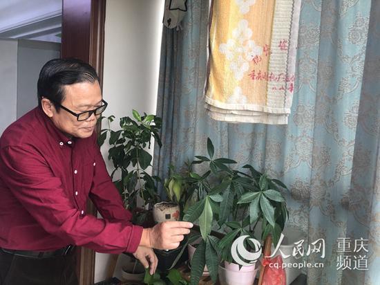 傅钟毅老人在家打理花草。胡虹 摄