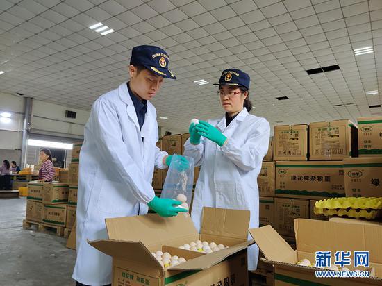 重庆海关工作人员进行鲜鸡蛋出口查验作业。新华网发(重庆海关 供图)