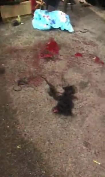事发现场地上有大片头发,残留多滩血迹。视频截图
