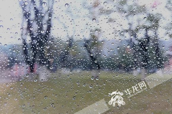 清晨雨水如约而至。记者 李裕锟 摄