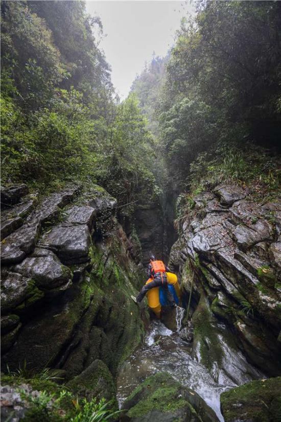 4月20日,经过一天的艰辛探索,探险队成功探索武隆神秘洞穴,成为该洞穴的第一批探索者。