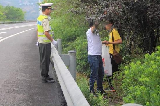 两人高速路边摘李子被抓现行