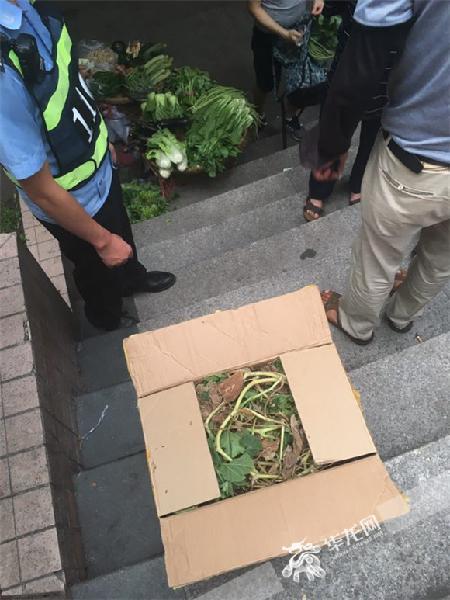 陌生男子留给热心摩托车司机王某的一箱菜叶。沙坪坝警方供图 华龙网发