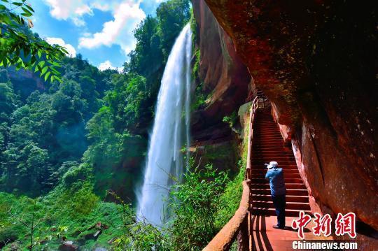 江津四面山受避暑游客青睐。 黄柏添 摄