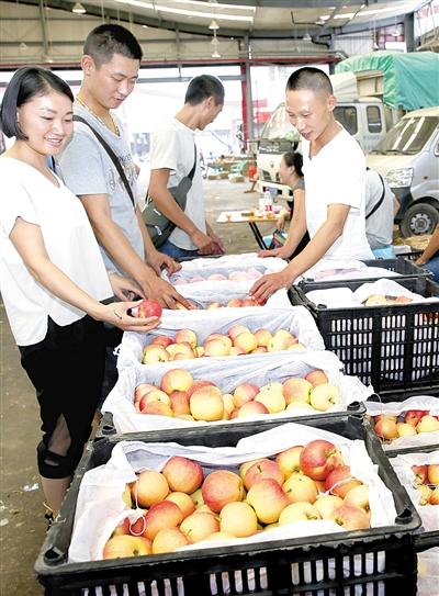 双福水果市场,来自陕西的苹果销售火爆。
