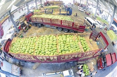 """我市最大的""""果篮子""""——双福水果市场交易火爆。"""