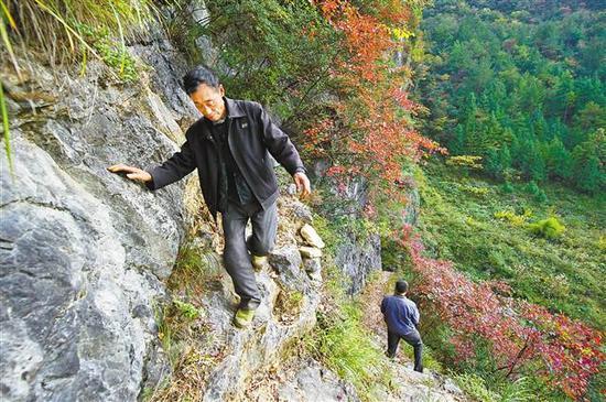 """11月8日,兰英村,村民行走在宽不过40厘米的青口岭崖壁""""毛毛路""""上。"""