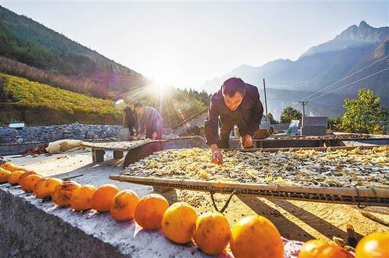 11月8日,兰英村周家坪,村民正在自家房顶翻晒萝卜片。