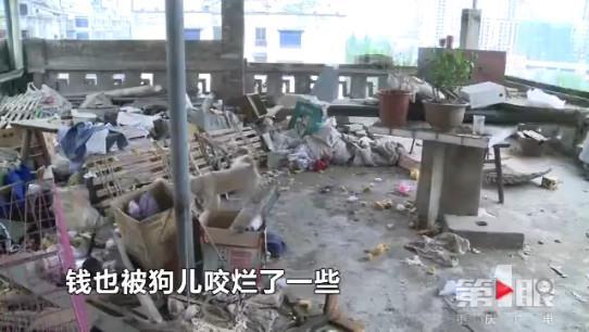 (第1眼-重庆广电特约记者 唐杰)