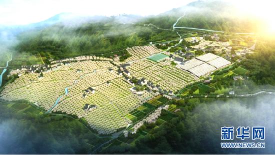 茶山村生态休闲农业示范园效果图。新华网发(茶山村提供)