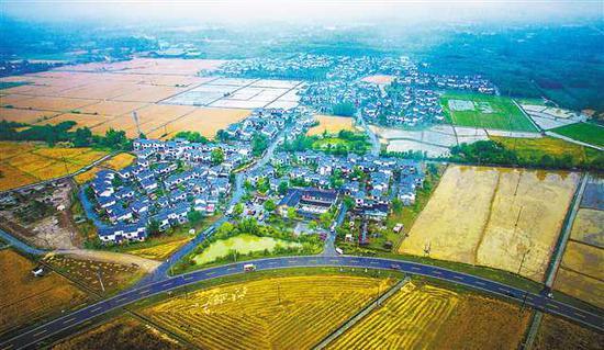 五月九日,崇州市白头镇五星村,当地正在打造一个集现代农业与现代服务业为一体的农村体验及乡村旅游目的地。 记者 郑宇 摄