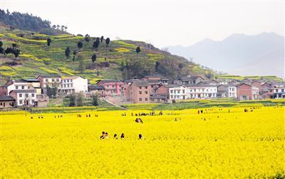 春天来了人们纷纷走出家门,踏青赏花。