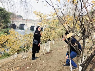 ◀园博园西部园林景点内的腊梅花开得正艳,引得市民拍照纪念。
