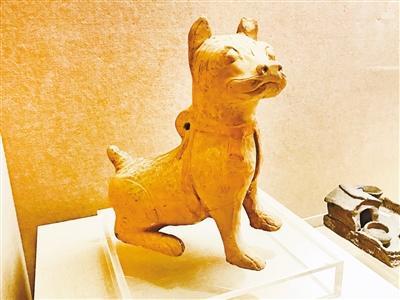 狗年来了去看狗博物展 川东猎犬的祖宗是啥样