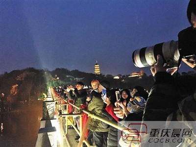 游客在园博园里看灯光秀。
