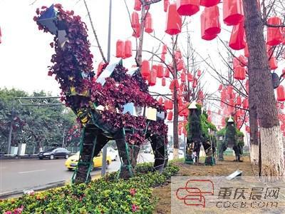 """北滨路上的创意绿雕——""""骆驼""""。"""