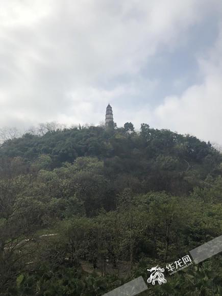 站在山脚抬头望去,虽然白塔所处山峰海拔并不高,但白色的塔身在阳光下显得格外醒目。首席记者 黄军 摄