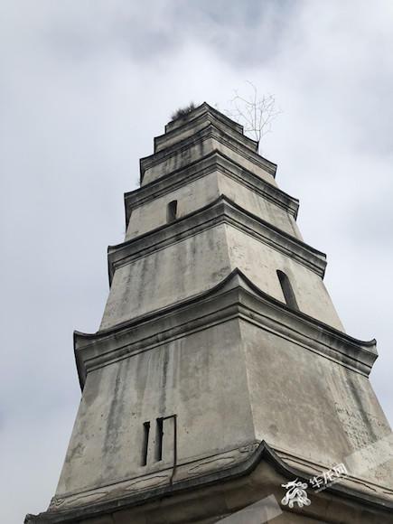 一抬头,七级楼阁式的文峰塔挺拔高大、古朴雄浑。首席记者 黄军 摄