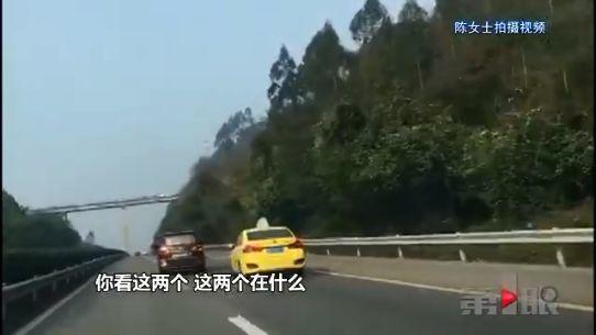 """新春出行""""路怒"""" 私家车和出租车高速路""""斗气"""""""