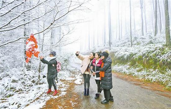 开州 1月4日,游客在开州区南山森林公园赏雪。 通讯员 叶娟 摄