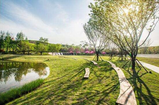 △九曲河湿地公园