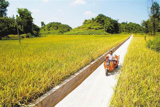 近年来,大足区龙石镇大力建设乡村便民步道,平整的水泥路面代替了以前泥泞的田坎小路。 马多 摄