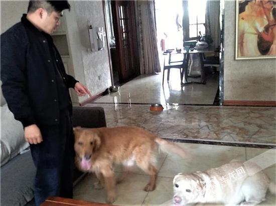 肖警官与他的两只爱犬。沙坪坝警方供图 华龙网发