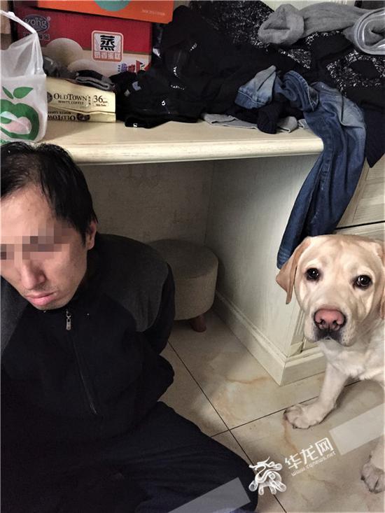 被民警控制的犯罪嫌疑人(左)。沙坪坝警方供图 华龙网发