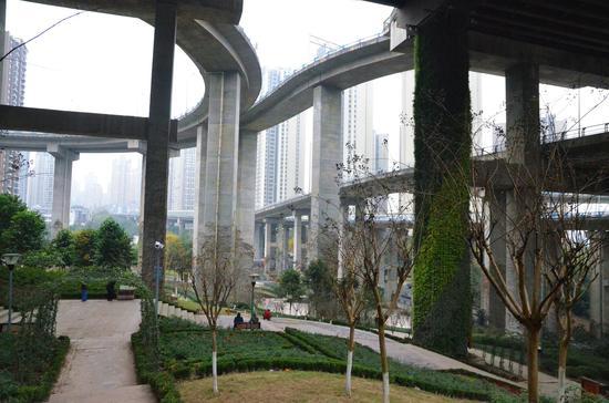 平均高28米!国内最高桥梁立体绿化公园全新亮相