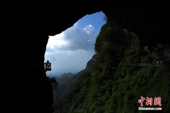 """重庆金佛山绝壁栈道吸引游客体验""""步步惊心"""""""