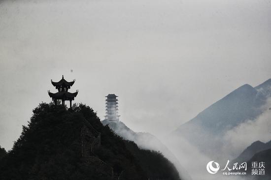 """重庆云阳:绝壁之巅盛开""""悬崖之花"""""""