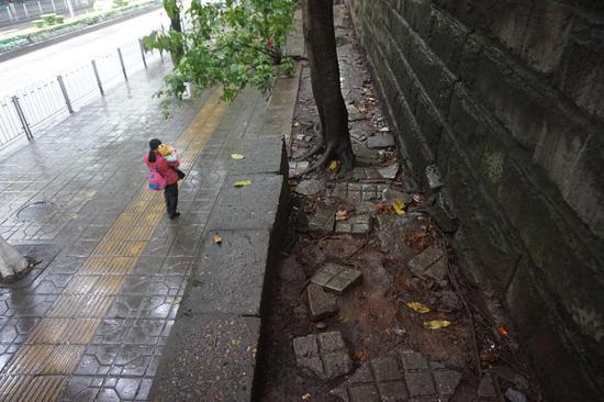 """重庆江北现""""最难过的人行道"""" 最窄处仅20厘米"""