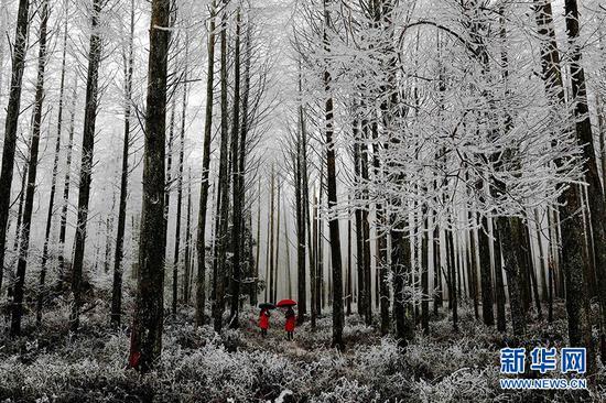 冰封八面山 八方游客前来赏雪