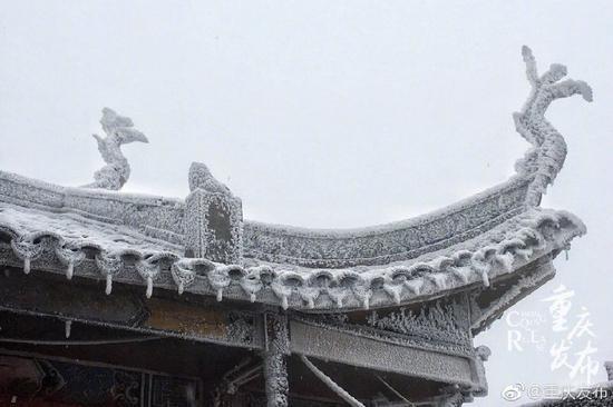 """重庆主城又下雪啦!渝北华蓥山一片""""北国风光"""""""