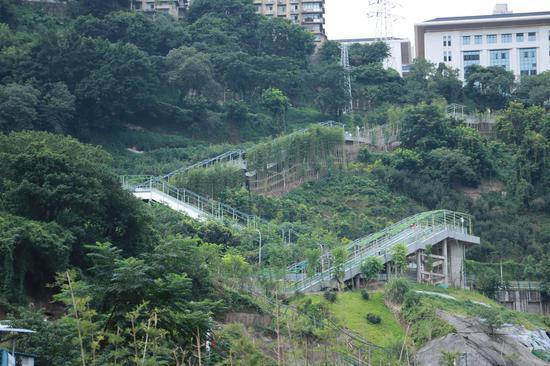重庆首条电动扶梯崖壁步道今日投入运行