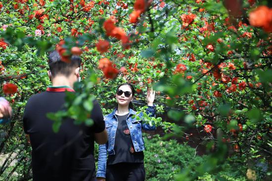 重庆植物园春花烂漫 引游人花式踏春