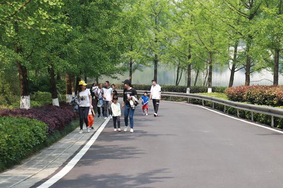 重庆园博园:风光旖旎绿意盎然 市民赏花游园[组图]