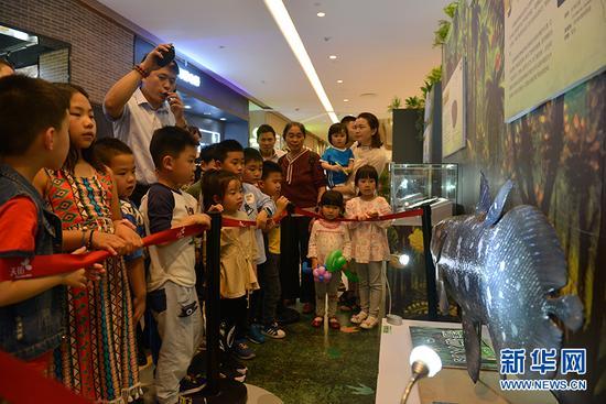 古动物化石科普展亮相重庆 市民可体验化石修复