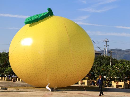 重庆梁平,一个巨型柚子充气装置陈列在龙滩村的中华•梁平柚海广场上。摄于11月2日,彭诗浩/摄